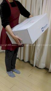 白洋舎_届いた箱の大きさ